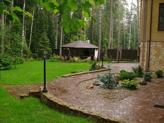 Ландшафтный дизайн участка с лесными деревьями
